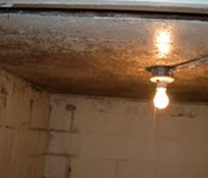 Mold Damage In Dubuque, Iowa Before