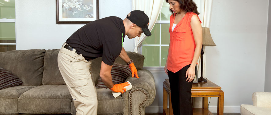 Dubuque, IA carpet upholstery cleaning